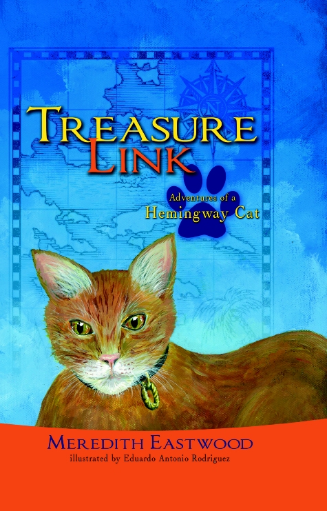 Treasure Link Book Cover