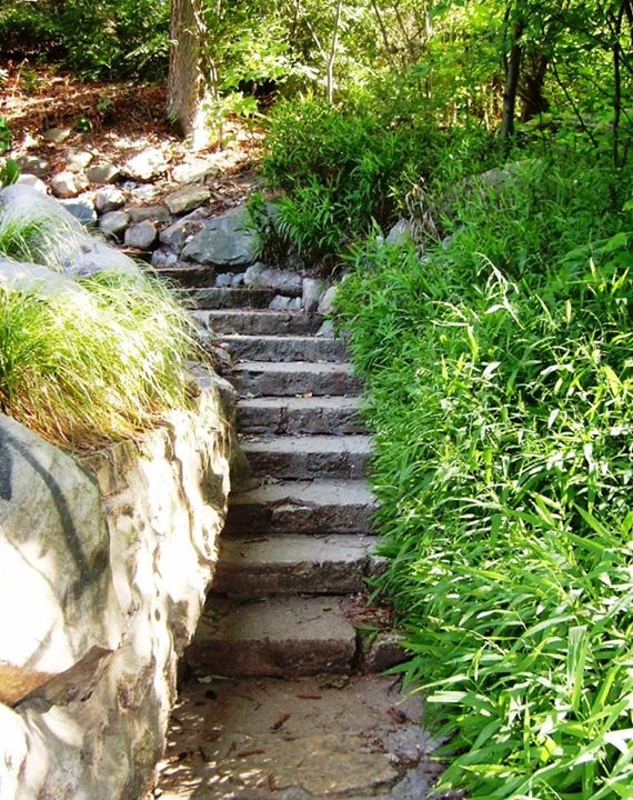 Rock Stairway - Photo by Meredith Eastwood