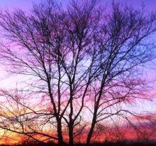 Sunrise - Photo by Meredith Eastwood