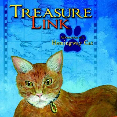 Treasure Link book cover detail